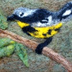 Yellow-Bellied Bird