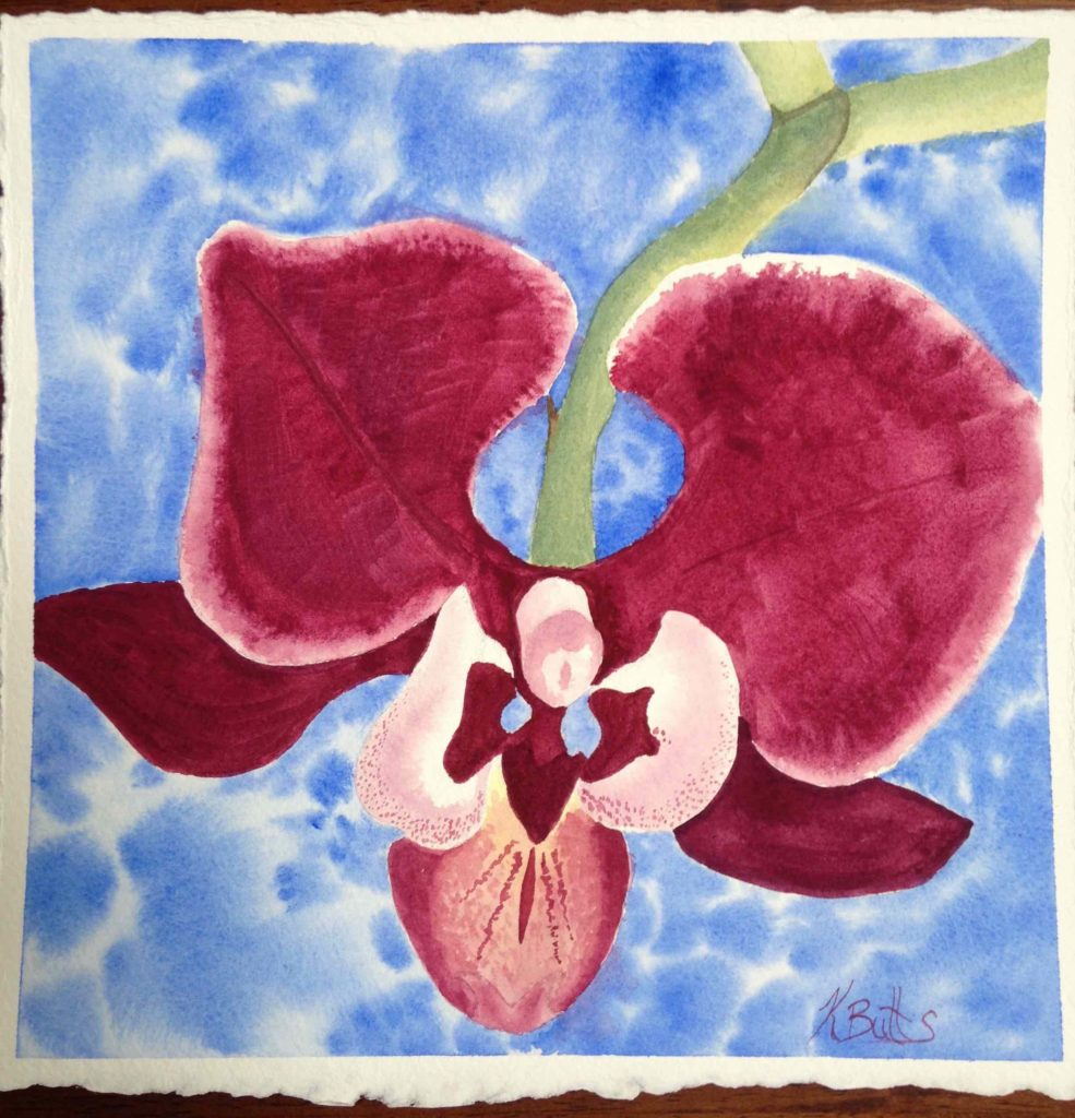 Orchid Full Size