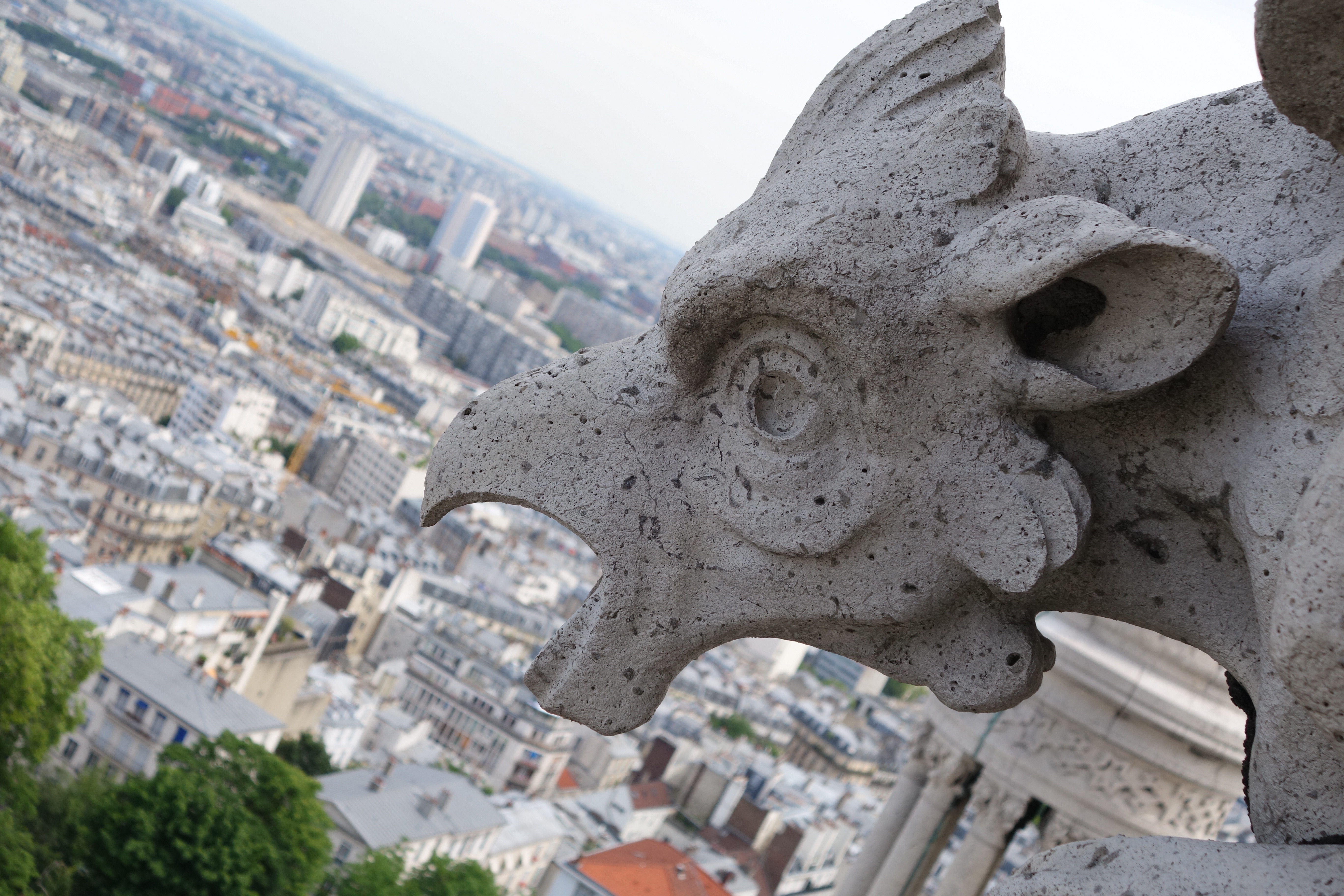 Detail of Gargoyle of Sacré Cœur